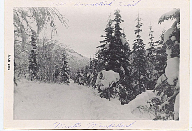 1959 - this was the 'road' that led into the valley back to where our mountain road began.  It is all a fine paved road now.  When I went back this summer of 2009 I saw that even our mountian road is now paved.  Who remembers when?