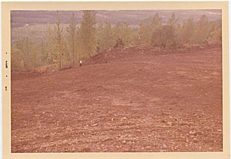 1966 - the final field.  I loved walking the field
