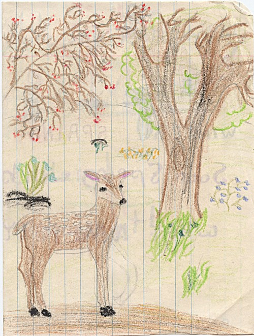 I think the deer was from a stencil -- I see I attempted to change the front leg so it was walking but erased my effort -- lots of plant related detail in this, notice the oval 'hole in the tree', lots of art therapist controversy over those!  I was enjoying using the crayons and colors in this drawing