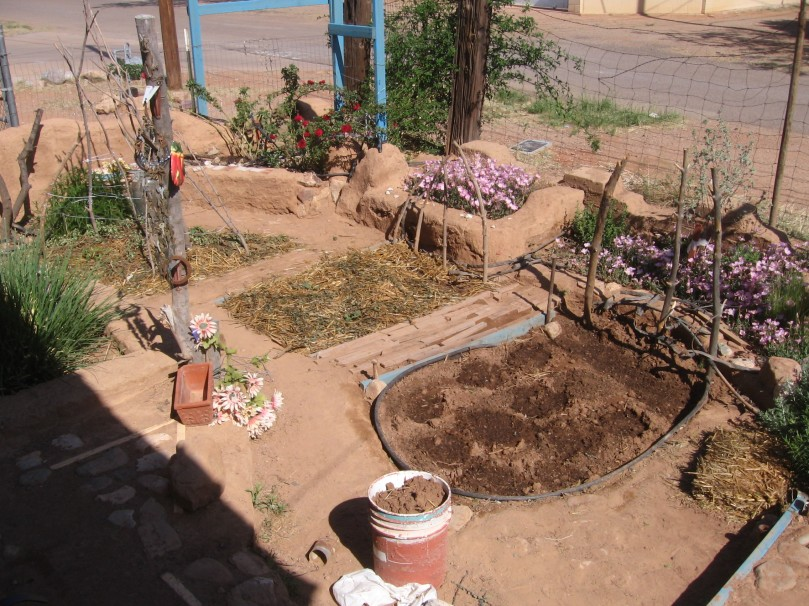 veg beds at front of house