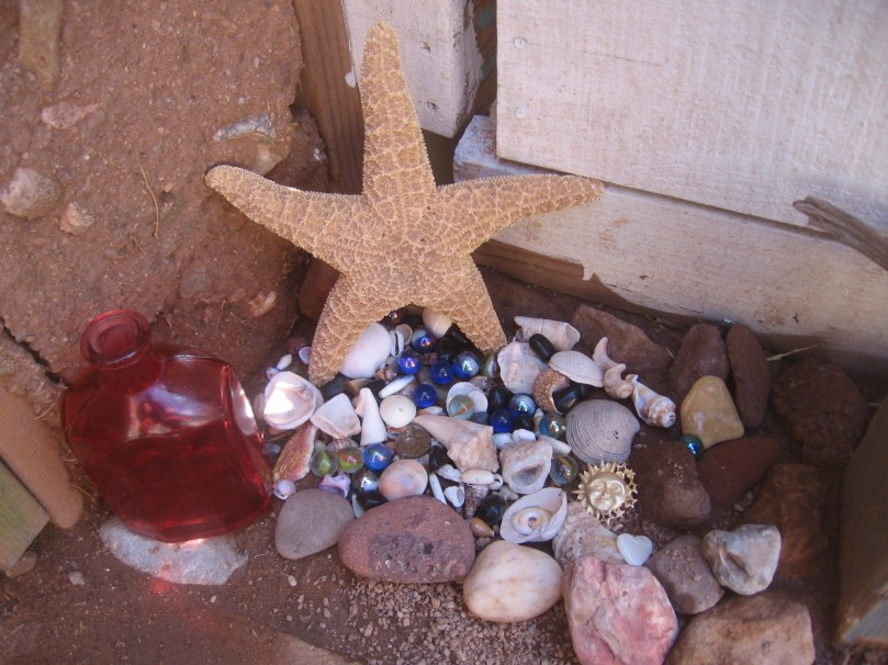 Inside the garden gate - gifts from the sea, gifts from my precious daughter - and a star fish