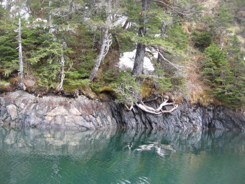 06 2013 alaska shoreline 11