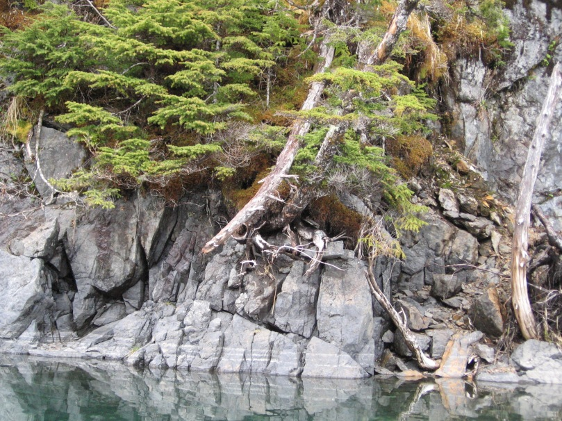 06 2013 alaska shoreline 4