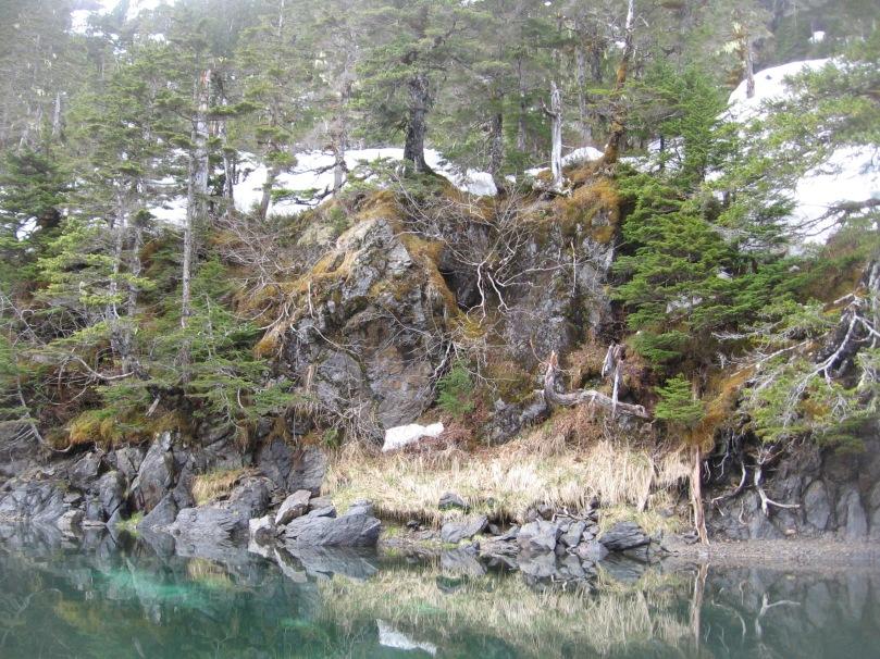 06 2013 alaska shoreline 6