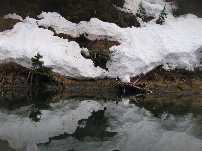 06 2013 alaska shoreline 8
