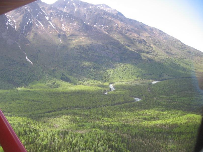 06 2013 valley alaska ER valley floor