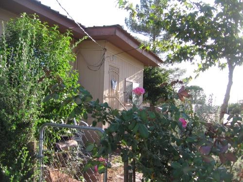 last az plus weaving MY AZ HOME pink 2014 001